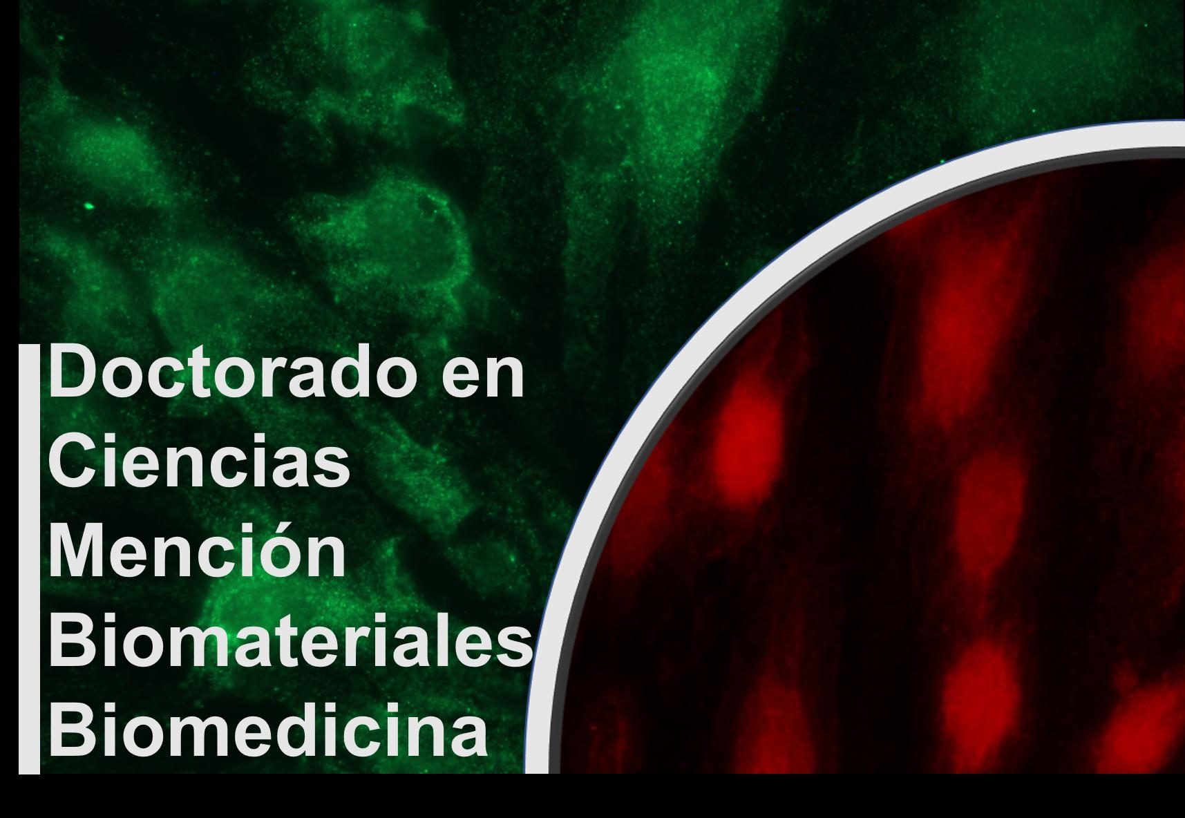 doctorado-ubo1